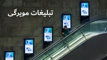 بازاریابی مویرگی چیست؟